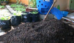 gambar pupuk kompos organik