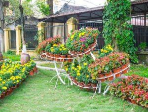 Taman Bunga Di Rumah