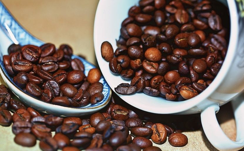 Robusta Caffee
