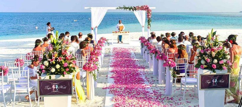 bunga mawar untuk acara pernikahan