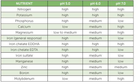 tabel nutrisi hidroponik