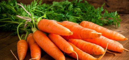 Wortel Sayuran Yang Penuh Beta Karoten